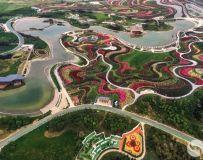 城市新地标-------南阳世界月季园