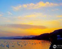 天鹅湖的夕阳{美};
