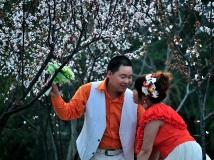 【13年第3期月赛】《春天的故事》