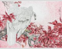 鹰   (影画创意作品)