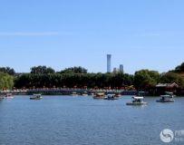 北京北海风光(61)