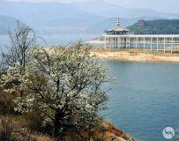 丹江大观园