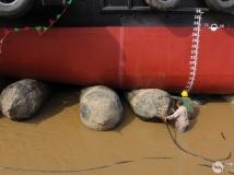新船下水组图