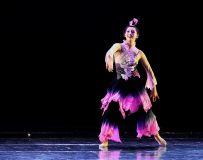舞蹈--爱莲说2
