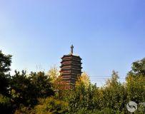 北京园博园看永定塔(3)