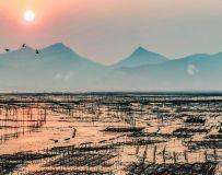 滨海养殖场