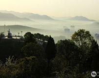 晨雾,牛尾山【组照】