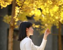 银杏-逆光-少女