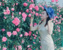 花开芬芳 花香四溢