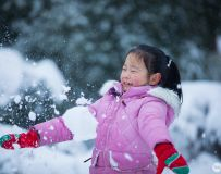 雪趣(组照4幅)