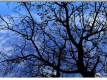 秋景定格黄土高原——潇雨视角