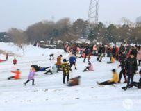 冬日的欢乐(组照)