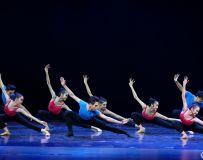舞蹈-基本功训练