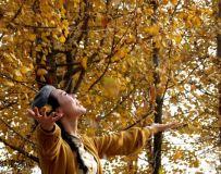 银杏树下的约定