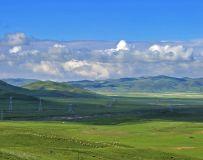 青海的草原