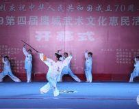 惠民武术文化活动(5)