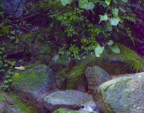 《尧山天龙池》美景!6