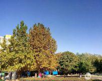 北京体育公园初冬随拍之二十二