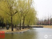 科大墨水河