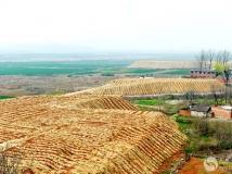 南水北调中线工程建设第二届全国摄影大赛《移土培肥》