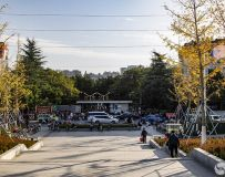 河滨公园之秋(1)