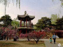 2015年第4期月赛——春和景明
