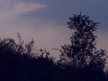 中秋节傍晚的云和山