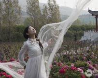 方城牡丹园人像习拍(2)