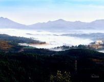 《初夏的晨雾》