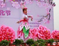 桃花节开幕式20