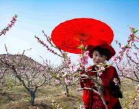 《春暖花开》