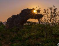 德云山生态植物园