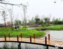 南阳世界月季大观园随拍(15)——内乡园