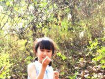 小c来到东花园 辛夷树下3