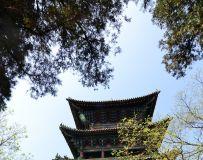 印象少林寺