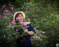 蔷薇人像习拍1