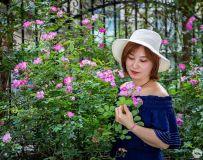 蔷薇人像习拍3