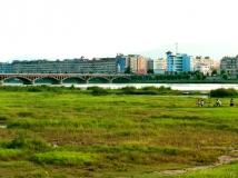 河南丹江湿地第二届生态保护摄影大赛