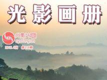 """每周一星""""戈子""""作品展(电子画册第219期)"""