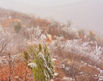 方山雾凇美9