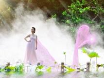 荷花仙子----拍摄深圳洪湖公园