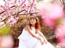2014年第三期 月赛   组照:春月那粉色的记忆