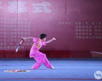 惠民武术文化活动(1)