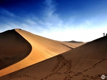 热情的沙漠