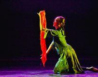 舞蹈--雏菊2