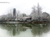 冬之韵-解放公园雪景