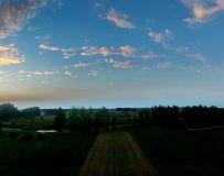 田园(手机拍摄)