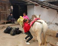 悬崖村上,一个彝族小女人用双手撑起一个家