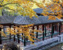 光影中国网2020年第10期月赛:秋色(谐趣圆的秋色入画来)组照