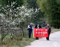 中国光影岳池部春之光采风行